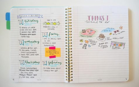 Recommendation: Academic Diary