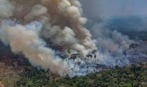 The Amazon is burning at a record rate.