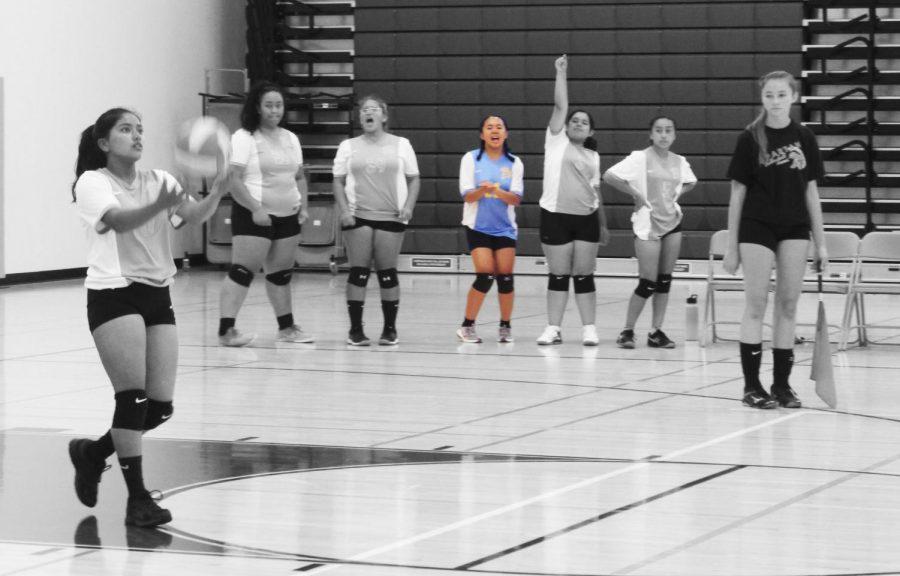 Lindsay - JV Volleyball