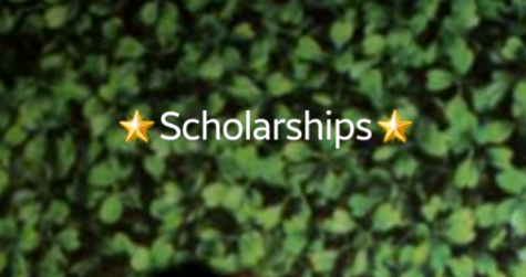 Scholarships! 2nd Week of November